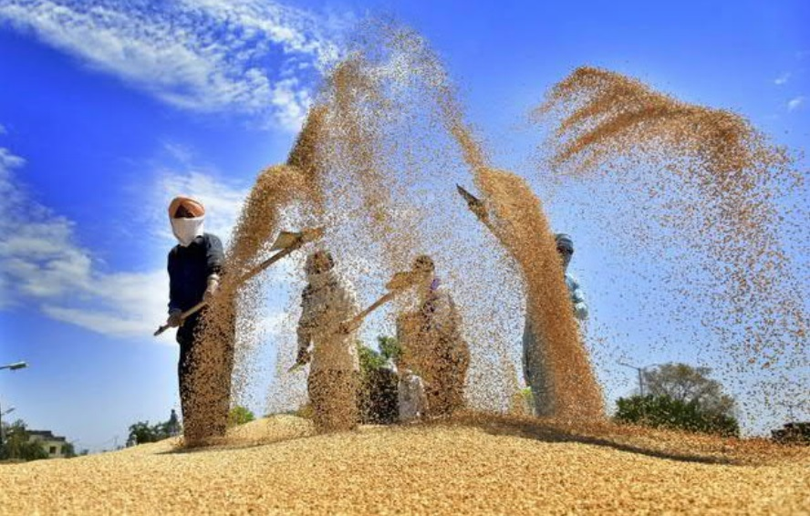 Renaissance in agricultural procurement: Case study from Punjab during Covid times